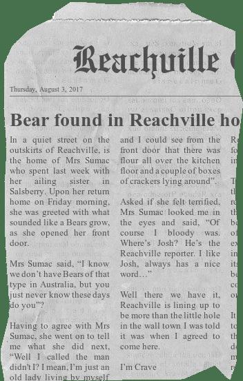 Bear found in Reachville home